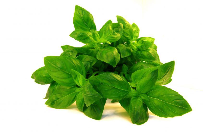 Fresh Herbs image