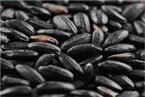 Beans image