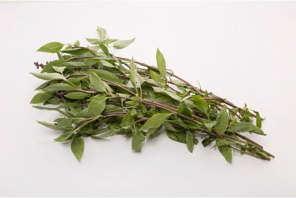 Herbs image
